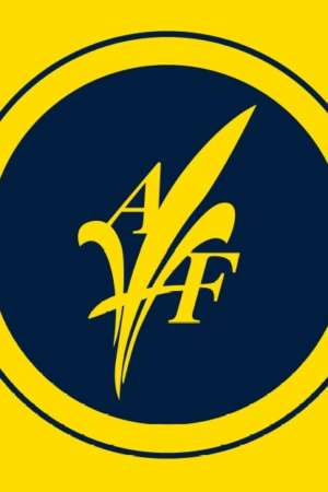 Drapeaux d'AF jaune (Collector)