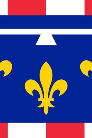 Drapeau du Centre 60×90
