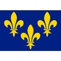 Drapeau fleur de lys Ile de France 90×150