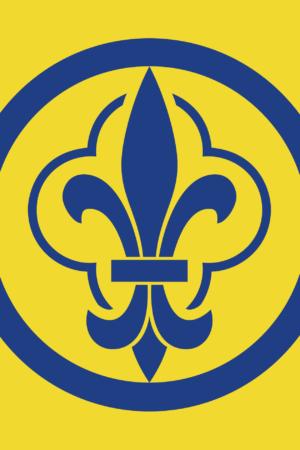 Drapeau d'AF jaune
