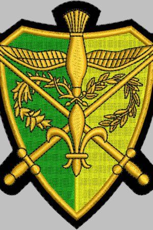 Écusson brodé camelot, vert et jaune