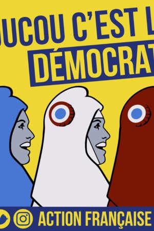 Coucou c'est la démocratie – 50 exemplaires