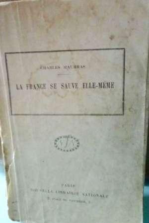 La France se sauve elle-même