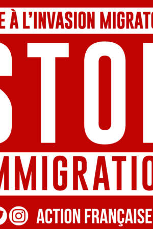 Stop immigration – 50 exemplaires